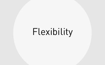 Leistungen_Flexibilitaet_kl_en