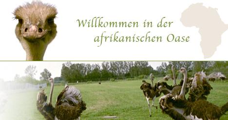 Herzlich Willkommen auf der Straußenfarm Donaumoos