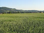 Die Schwäbische Alb mit ihren charakteristischen Landschaftsformen