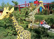 Dschungel Expedition in Deutschland? Das LEGOLAND in Günzburg machts möglich!