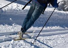 Winter in Bayern - Rodeln, Skifahren, Weihnachtsmärkte & Krippen, Stadtreisen, Wellness Kur und mehr