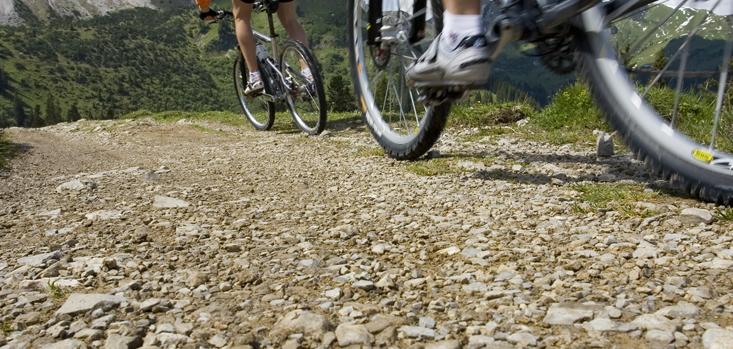Startnummer-drucken-mountainbike