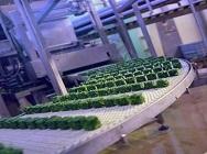 Branche - Lebensmittel