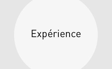 Leistungen_Erfahrung_kl_fr