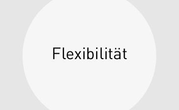 Leistungen_Flexibilitaet_kl
